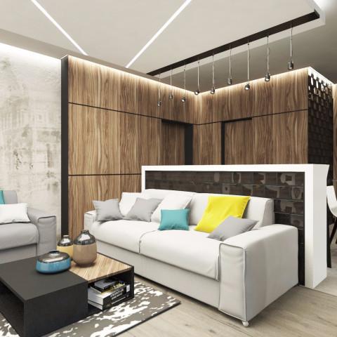Дизайн интерьера гостиной - 20